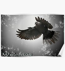 Welcome Cards Poster