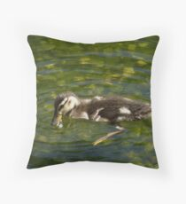 Sibley Baby Mallard Throw Pillow
