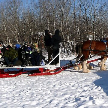 Family Sleigh Ride by umpa1