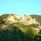 Seneca Rocks by Fred Moskey