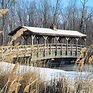 covered bridge by MIbitoflife