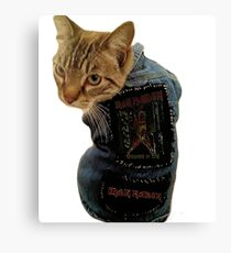 Iron Maiden Cat Canvas Print