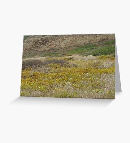 Cabrillo National Park, California Greeting Card