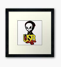 USB sLAve Framed Print