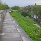 walking the walls of York by BronReid