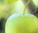 Green apple by aMOONy