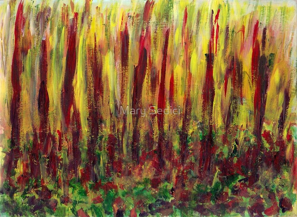 Burning Forest  by Mary Sedici