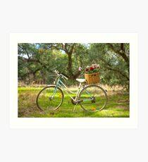 Lovely La Belle By Malvern Star..... Art Print