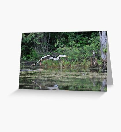 Off to find a quiet place Greeting Card