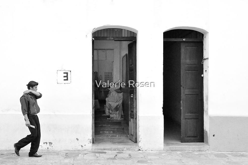 3 by Valerie Rosen