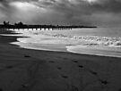 Waimea Coast by Suzanne Cummings