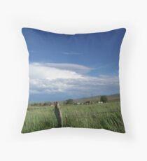 Ironside - Eastern Oregon Throw Pillow