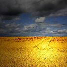 A FIELD OF BROKEN DREAMS by leonie7