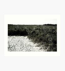 Dry Earth Art Print