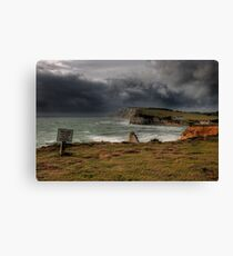 Don't get too close to the edge! Canvas Print