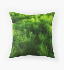 Tell Tails Throw Pillow