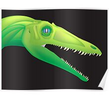 Coelophysis bauri Poster