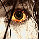 goldeneye by Vimm