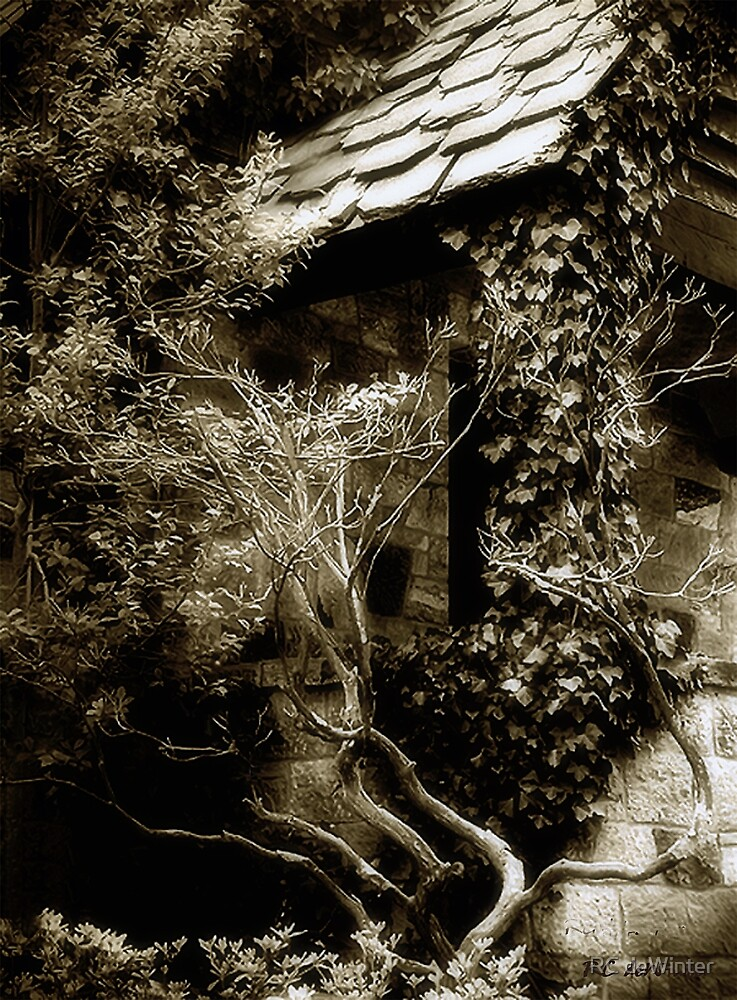 Abandoned Love by RC deWinter