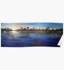 Last light Okavango Swamp Poster