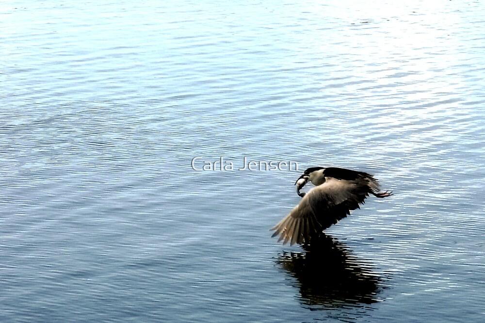 Successful Catch by Carla Jensen