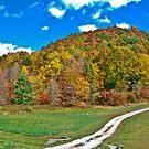 Autumn in those West Virginia Hills by Bryan D. Spellman