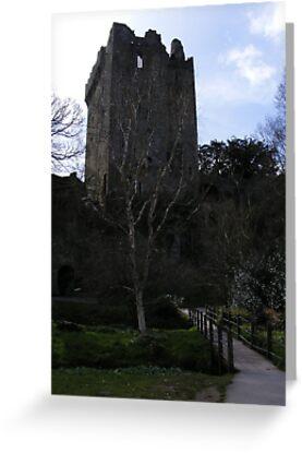 Blarney Stone Castle by kbug1011