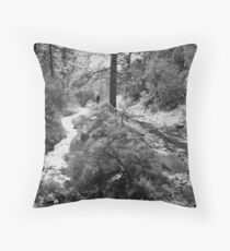 Hunting For Fairy Crosses Outside of Taos Throw Pillow