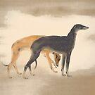 Zwei Greyhounds von anni103