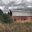 Along a Country Road by Bob Hortman