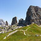 Dolomiti - Cinque torri by pietrofoto