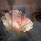 Encounters of Love by Lozzar Flowers & Art