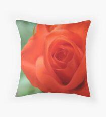 Crackling Rosey Throw Pillow