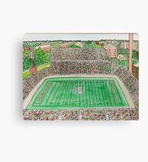 Spartan Stadium Canvas Print