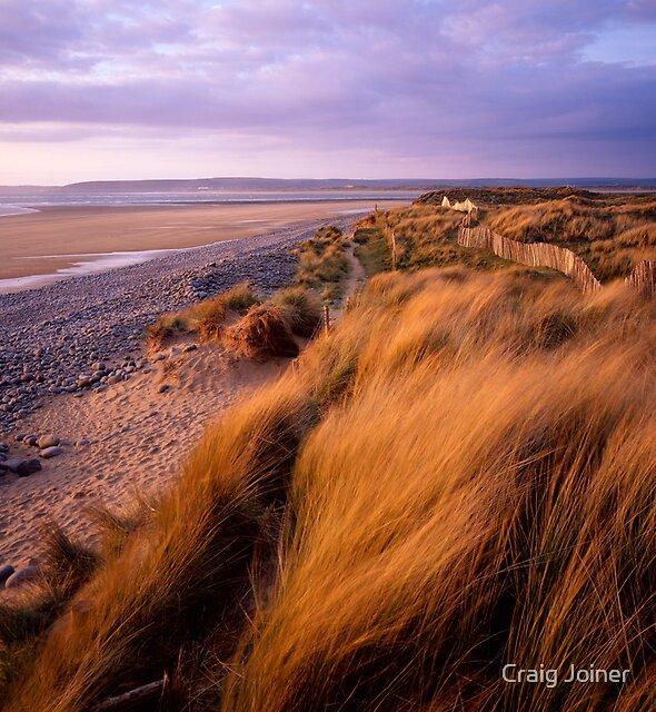 Sand Dunes at Westward Ho!, Devon by Craig Joiner