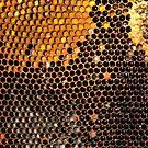 «Panal con polen» de WesternExposure