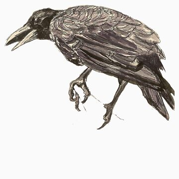 Crow  by DesignBakery