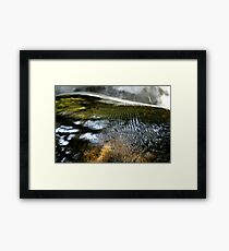 Fish Scales Framed Print