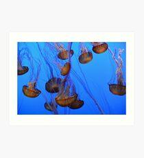 Jellyfish at Play Art Print