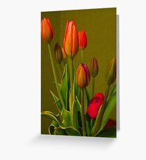 Tulips Against Green Greeting Card
