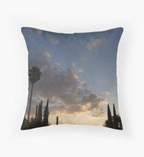 beatuiful sunset Throw Pillow