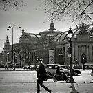 Champs Elysées by laurentlesax