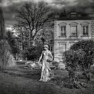 The house by laurentlesax