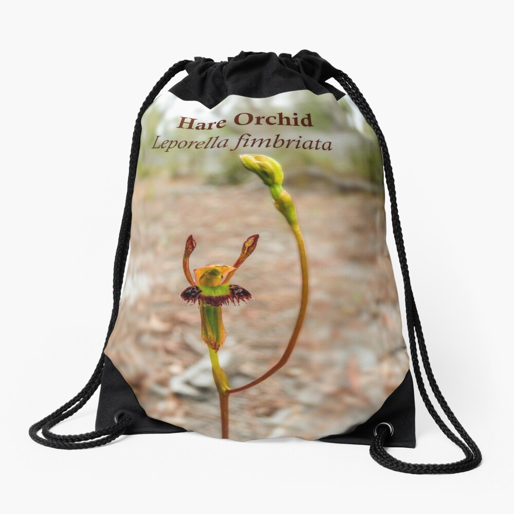 Hare Orchid, Leporella fimbriata in natural environment Drawstring Bag
