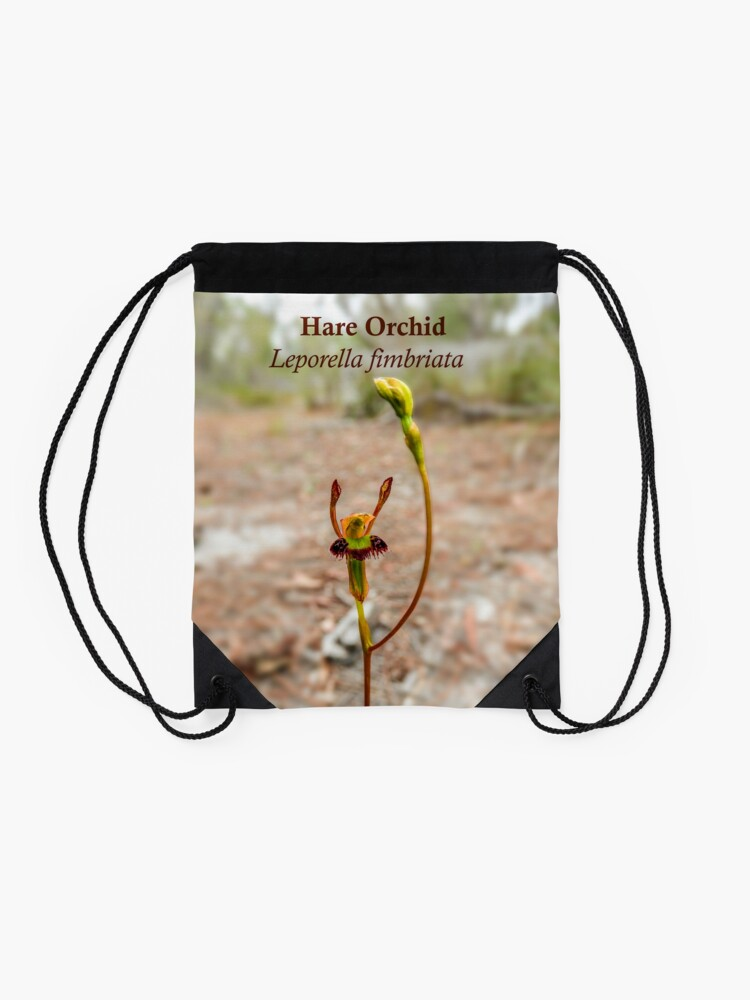 Alternate view of Hare Orchid, Leporella fimbriata in natural environment Drawstring Bag