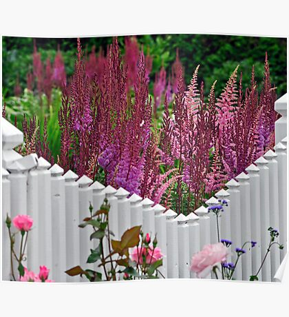 Dream Picket Fence Poster