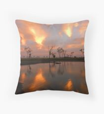ZIGZAGS Throw Pillow