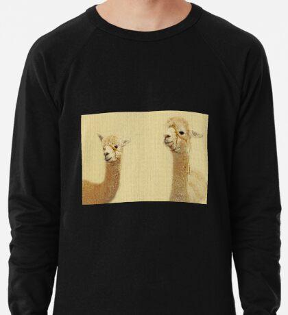 Porträt von zwei Alpakas Leichtes Sweatshirt