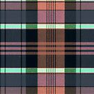 Flannel Comfort #45 by writermore