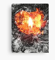 Earth, Air, Fire and Water Canvas Print